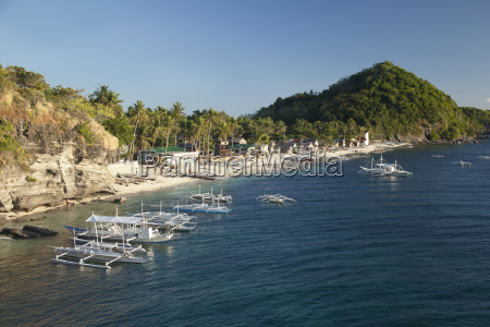 the view of the apo island