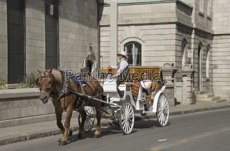woman taking a carriage ride