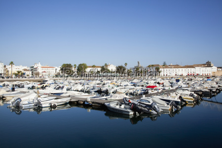 boats moored in the harbour faro