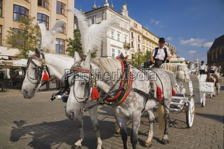 horse drawn carriage parked in the