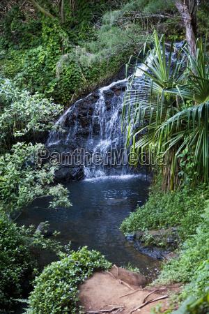 waterfall at queens bath princeville kauai