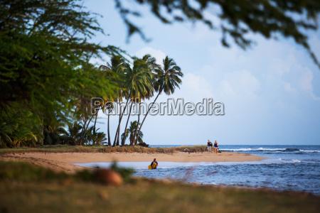 secluded beach waimea kauai hawaii usa