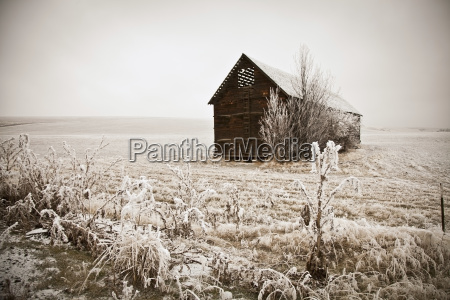 sepia winter barn with hoar frost
