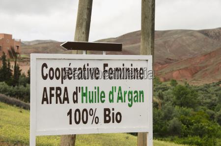 segno cooperativo femminile per olio di