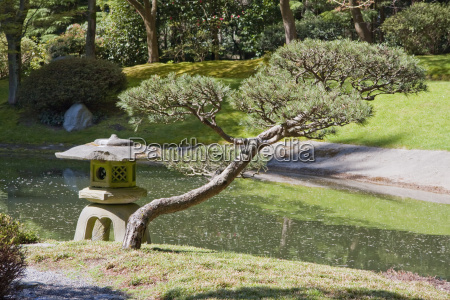 stone lamp in nitobe memorial garden