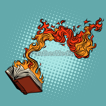 the book burns destruction of knowledge