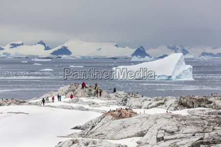 tourists from the polar star hike