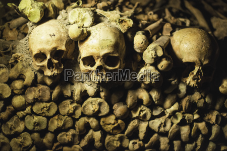skulls peer out from a pile