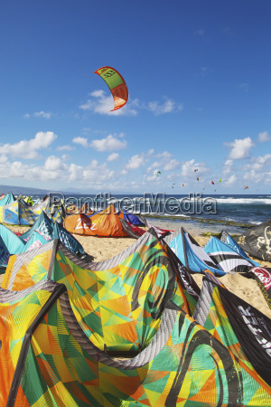a multitude of kites for kitesurfing