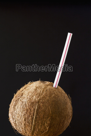 close up of a coconut with