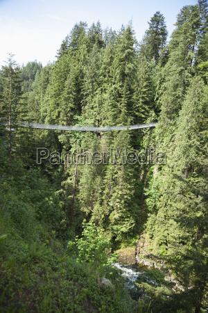 capilano suspension bridge vancouver british columbia