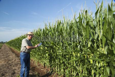 blau farbe amerikanisch modern moderne landwirtschaft