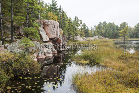 rock lake shore with several green