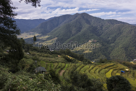 farmland in a valley surrounded by