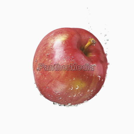 a red apple covered in water