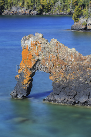 sea lion an arch on the