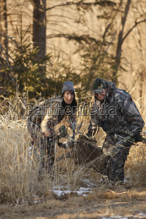 hunters dragging whitetail buck out of