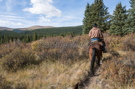 trail riding ya ha tinda ranch