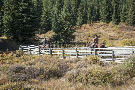 cowboys and horses on bridge ya
