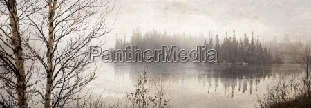 northern autumn landscape in fog and