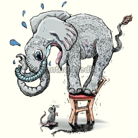 elefant mit grosser angst vor der
