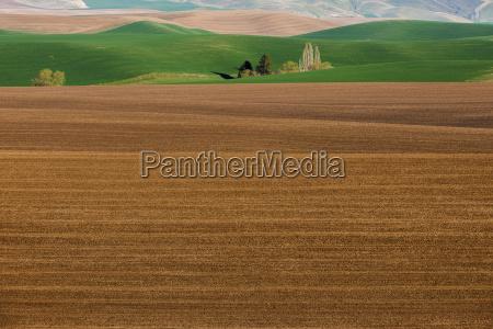 fahrt reisen landwirtschaftlich farbe anhoehe huegel