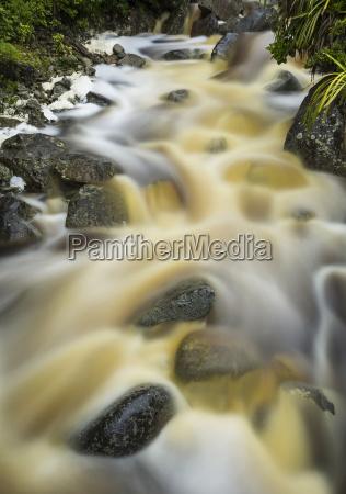 beautiful karamea stream with cascading misty