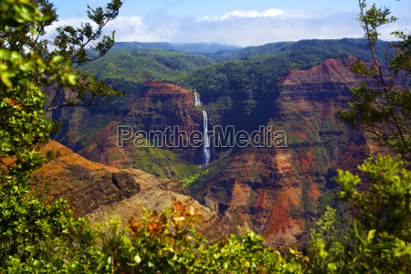 waimea canyon falls and lush foliage