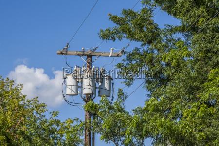 baum baeume industrie energie strom elektrizitaet