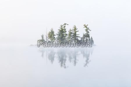 fog shrouds a small island on