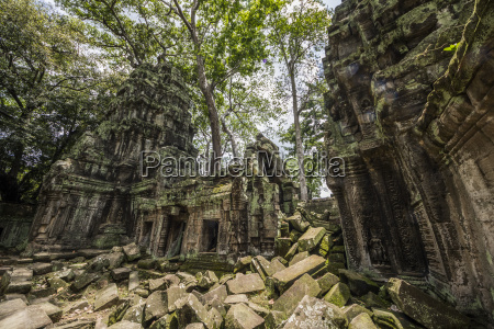 ta prohm temple ruins overgrown by