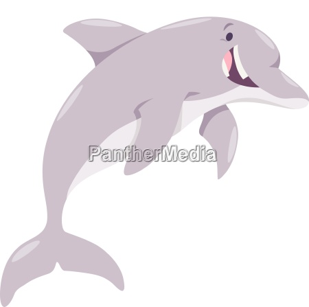 cartoon dolphin animal character