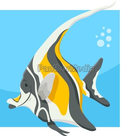 funny cartoon fish animal character