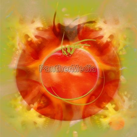 illustration, von, tomaten - 25652391