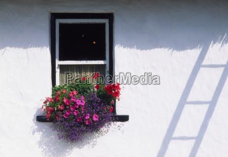 ireland traditional cottage windows