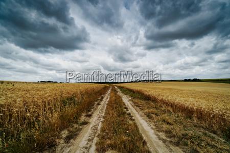 landwirtschaft feld mit wolken