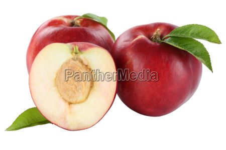 nektarine nektarinen frucht fruechte obst freisteller