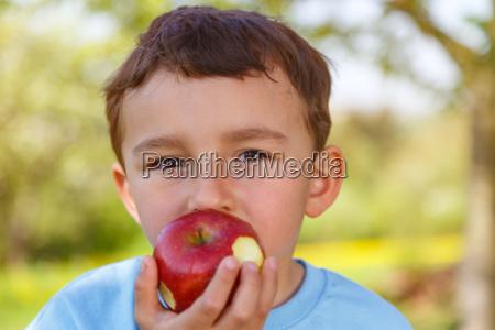 child little boy eats apple fruit