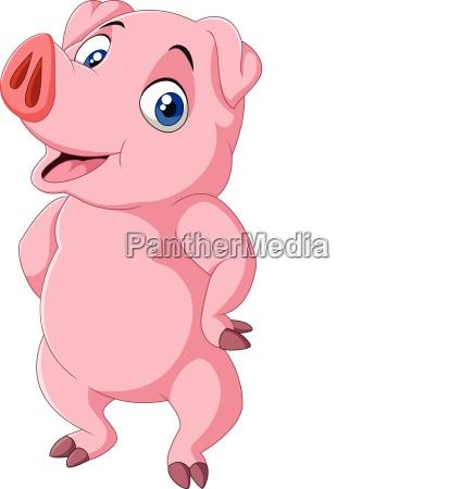 landwirtschaft ackerbau schwein borstenvieh rosa