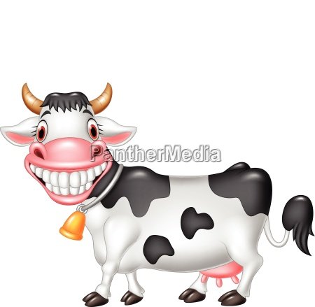 cartoon happy cow isolated on white