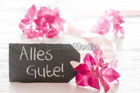hydrangea blossom alles gute means best
