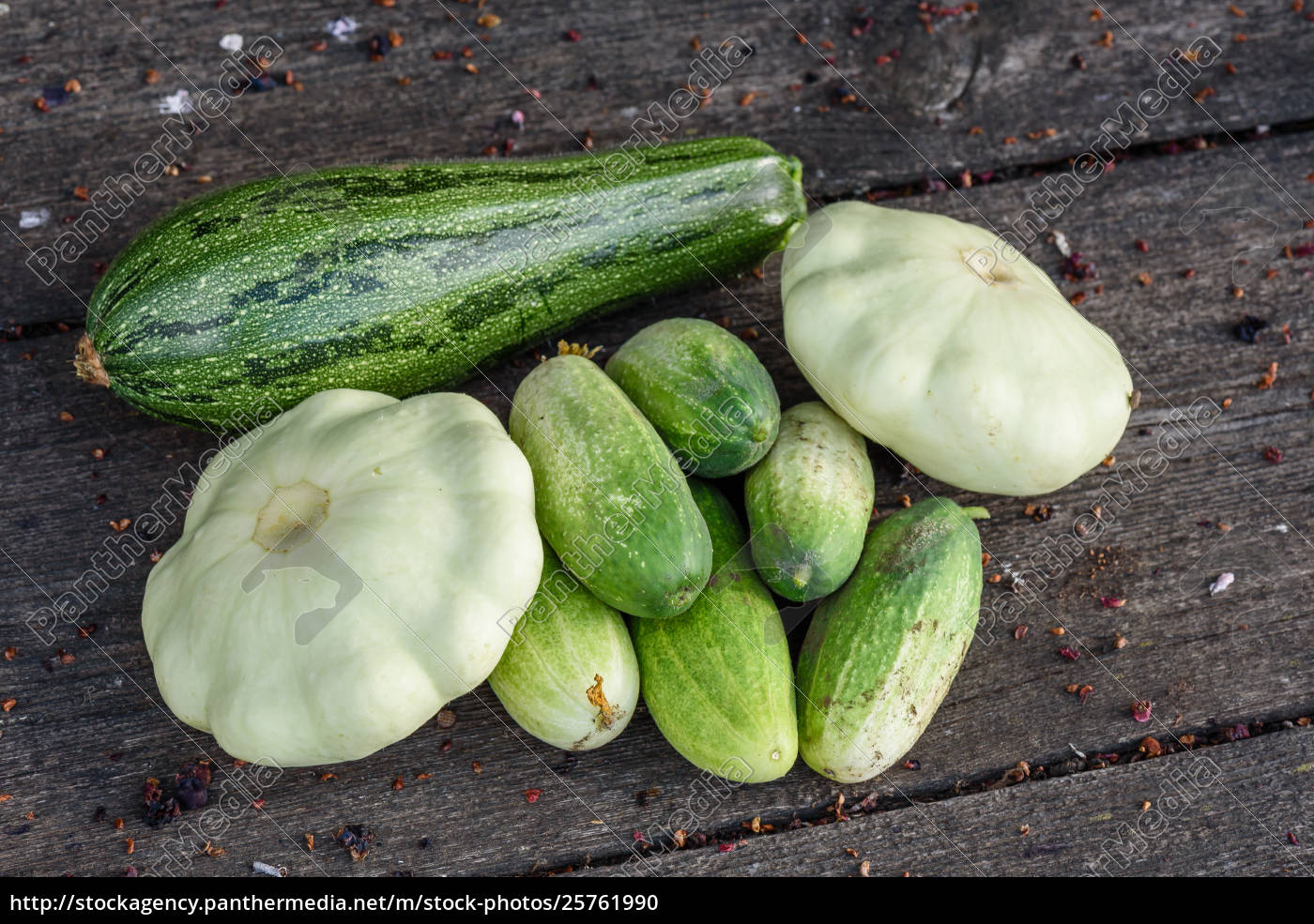 zucchini, , pattypan, squash, , cucumbers, harvested, from - 25761990