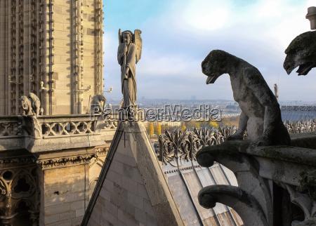 chimeras gargoyles der kathedrale notre dame