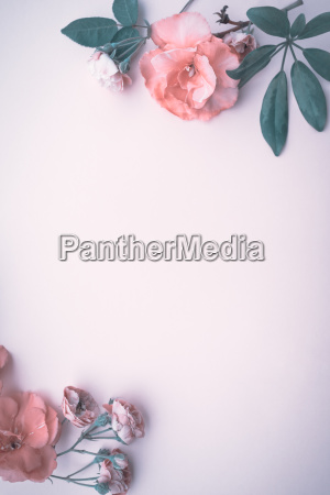 beautiful floral background border