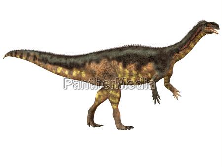 plateosaurus seitenprofil