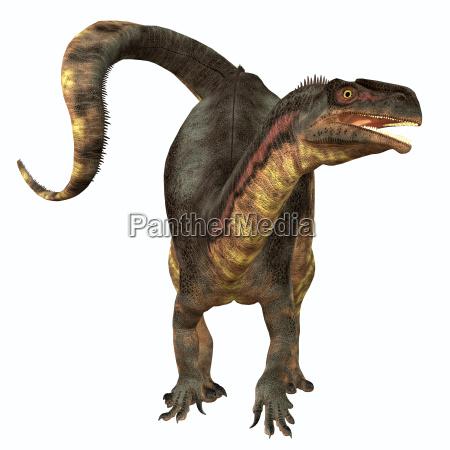 plateosaurus pflanzenfresser dinosaurier