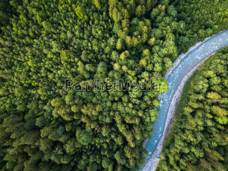 aerial top view of summer green