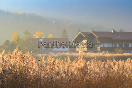 herbstmorgen landschaft mit nebel ueber see