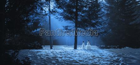 magische winterszene im wald mit zwei