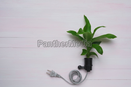electric plug with plant fresh green